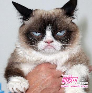 副不高兴的表情图片