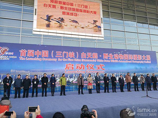 首届中国(三门峡)白天鹅·野生动物国际摄影大展启动