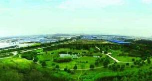 """义马市:绿色产业""""点亮""""精准扶贫"""""""