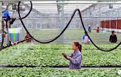 脱贫攻坚政策100问(十)