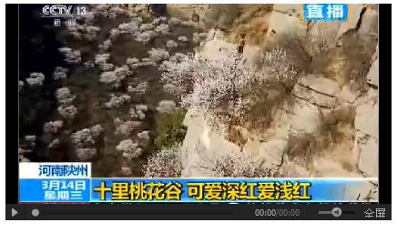 央视聚焦三门峡陕州十里桃花