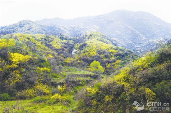抬望眼绿水青山 凭栏处金山银山