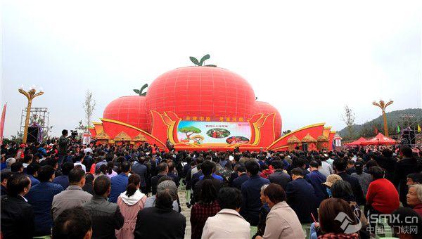 """2020第三届中国农民丰收节·灵宝苹果采摘季开幕"""""""