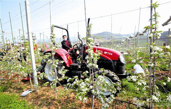 农机进果园 提质又增效