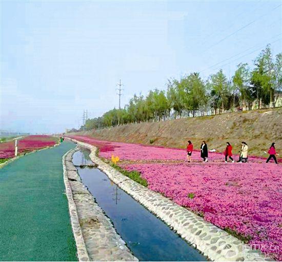 建设城区水生态体系 提高市民生活质量