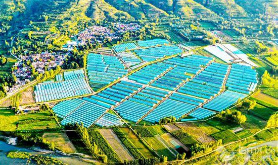 产业助力乡村振兴