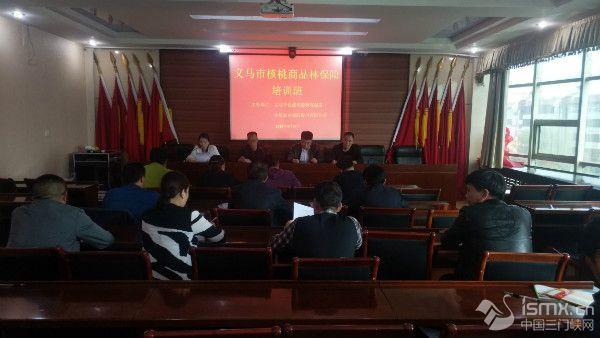 义马市自然资源和规划局开展核桃商品林保险培训会